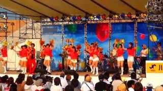 川口たたら祭り2013_桑田研究会バンド