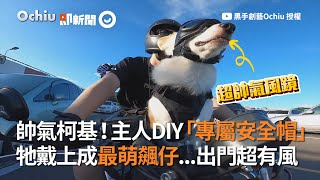 幫柯基犬客製專屬3D列印安全帽 狗狗戴好上路 帥氣拉風|寵物|DIY