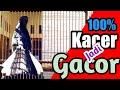 Kacer Bisu Jadi Gacor Dengan Pancingan Kacer Ini Suara Kacer Gacor  Mp3 - Mp4 Download