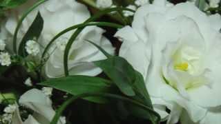 обзор свадьбы 21 июня 2013 Рубен и Альбина