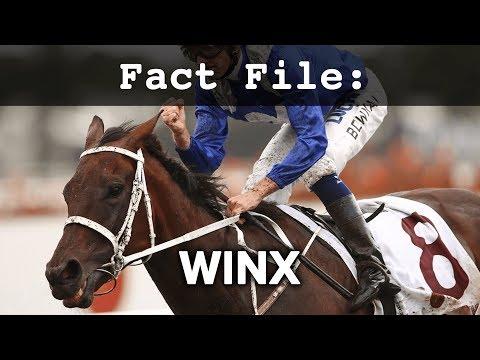Fact File: Winx