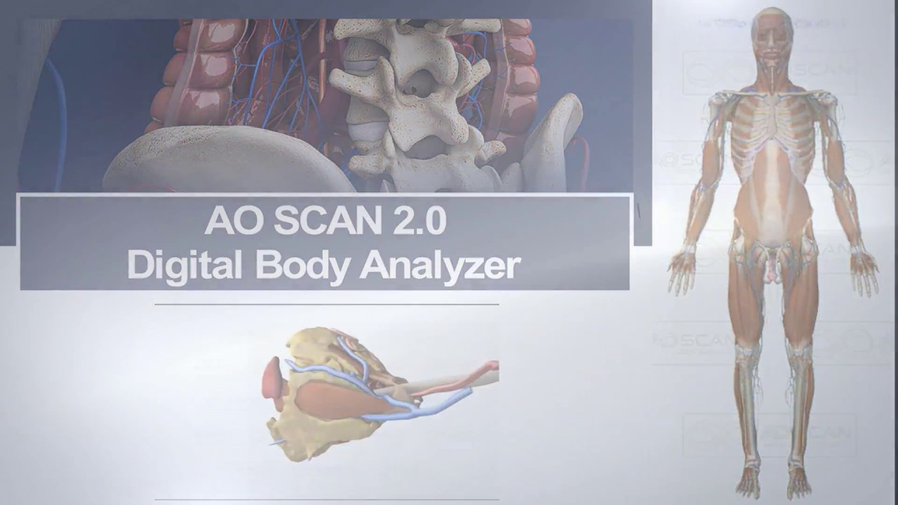 AO Scan Digital Body Analyzer - Practitioner Demonstration