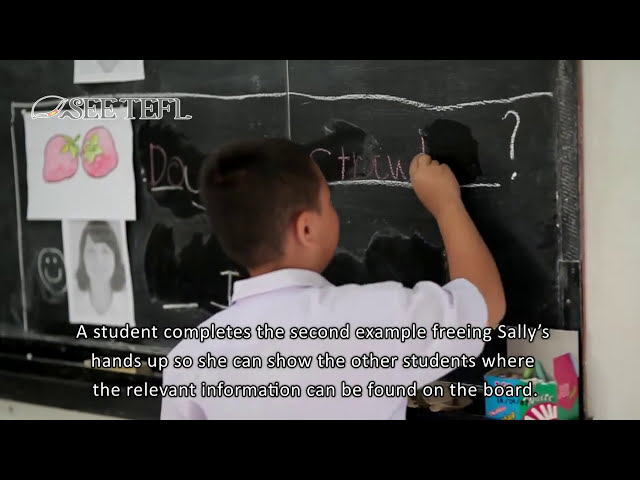 Practice Stage of a PPP (3Ps) EFL Lesson with subtitles