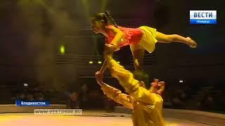 Во Владивостоке прошло первое представление в обновленном цирке