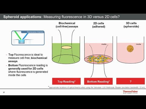 Interrogating 3D Versus 2D Cell Models In Drug Discovery Using Cell Health Microplate Assays
