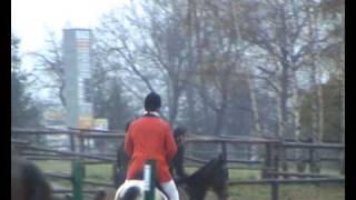 Hubertus 2009 - Siercza (PonySport) - końcówka gonitwy