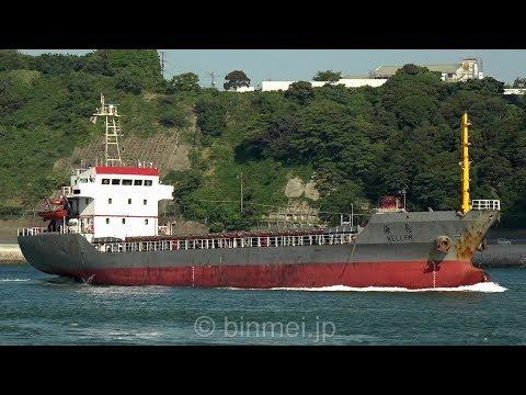 HELLEN - GOLDEN OCEAN SHIPPING bulk carrier