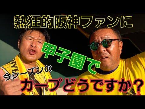 甲子園で本場の阪神ファンにカープの印象を聞いてみた!!!