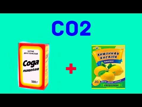 author hobbies (Аквариумистика и рыбалка) №42 (co2 лимонка и сода)