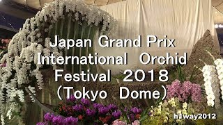 Japan Grand Prix International Orchid Festival 2018( 世界らん展日本大賞2018) thumbnail
