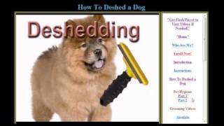 Online & Home Study Pet Grooming Classes @ Www.onlinegroomingschool.com