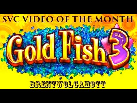 Slot Video Creators' Video Of The Month - GOLDFISH 3 - Slot Machine Bonus