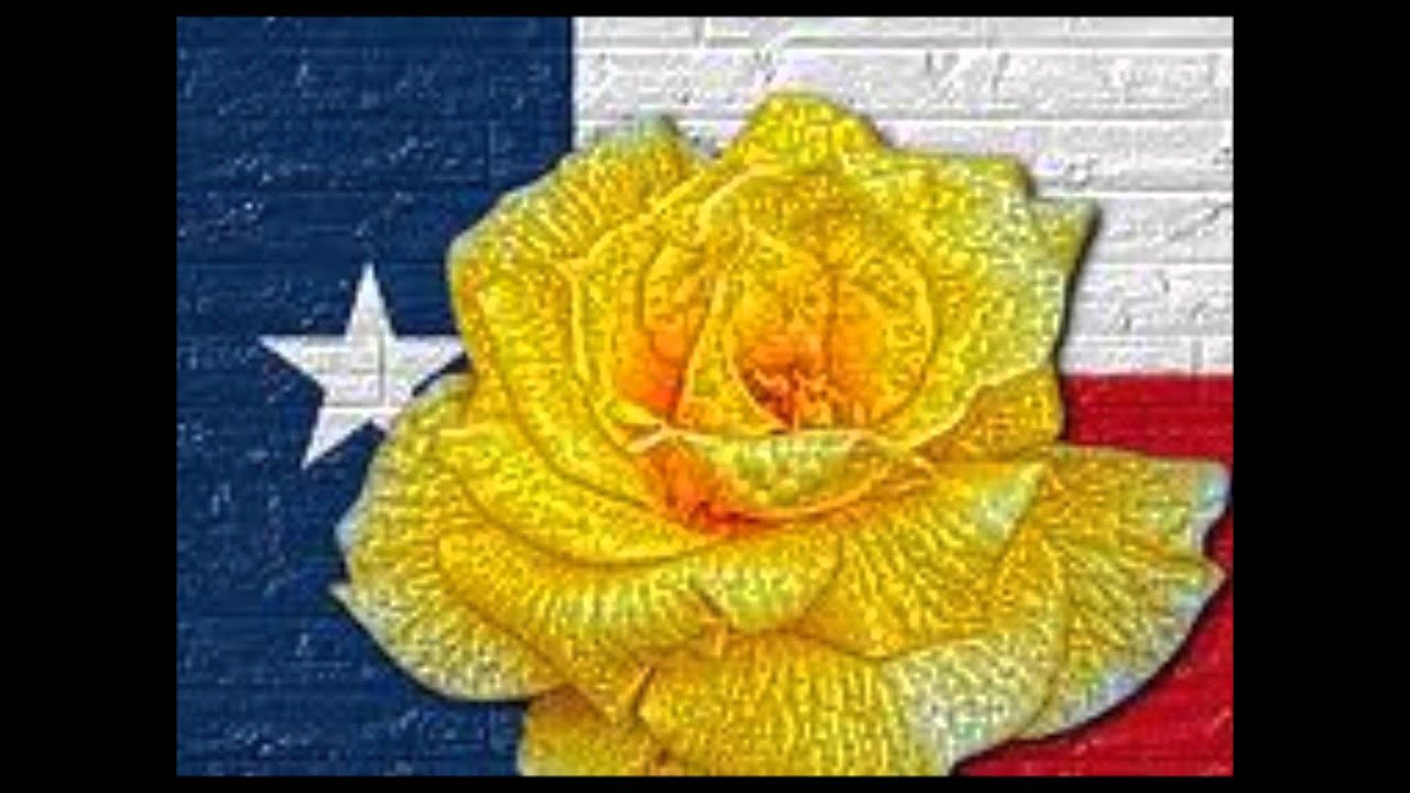93 the yellow rose of texas essential elements 2000 book 2 band the yellow rose of texas essential elements 2000 book 2 band mightylinksfo