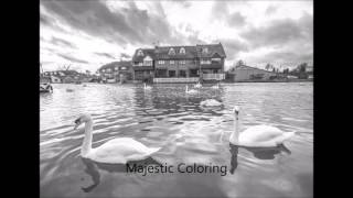 on the water vol 2 grayscale coloring book