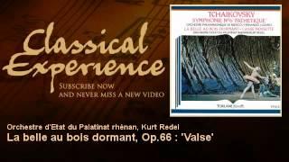 Piotr Ilyitch Tchaïkovsky : La belle au bois dormant, Op.66 :
