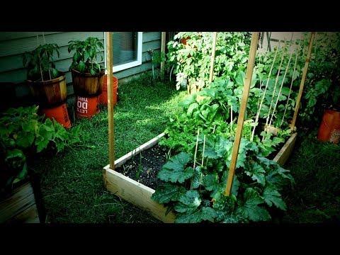 Jardin Potager BIO (Petite Surface)