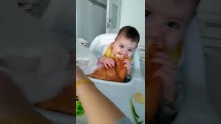 Gambar cover Ekmek Yiyen Küçük Bebek