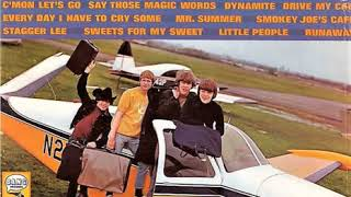 Download The McCoys - little people