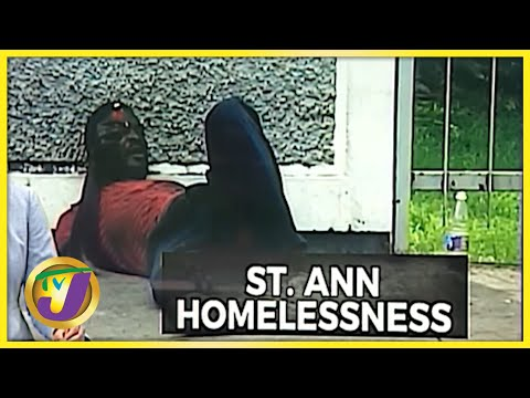 Increase in Homeless People in St. Ann   TVJ News - Oct 12 2021