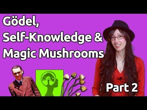(2) Gödel, Self-Knowledge & Magic Mushrooms – Transcending Stuff to Know Stuff