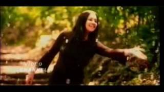 Haire Mere Hui Gulabi - Falguni Pathak song