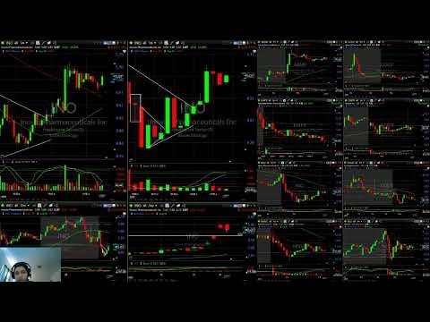 stock market live trading