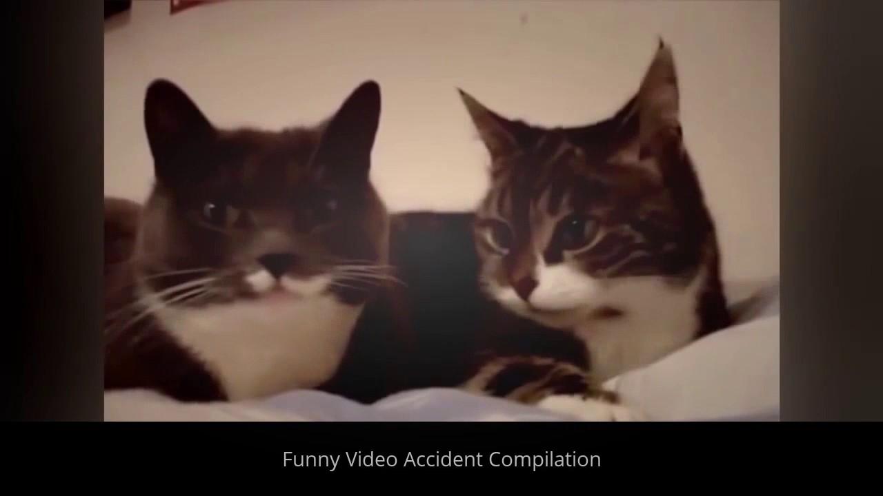 笑える   バイン   面白いビデオ事故コンパイル
