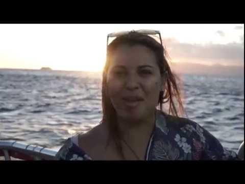 Board the Hawaii Glass Bottom Boats in Honolulu!