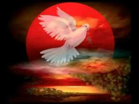 FRECUENCIAS DEL ALMA. MÚSICA PARA SENTIR Y CONECTAR CON TU INTERIOR - ROBERT HAIG COXON RELAX MUSIC - YouTube [360p]