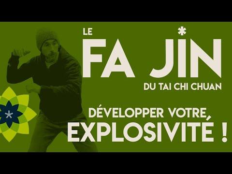 Download DEVELOPPER SON EXPLOSIVITÉ GRÂCE AU FAJIN DU TAI CHI CHUAN / Esprit Du Corps