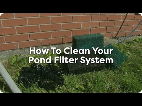 How To Clean Your Pond Filters