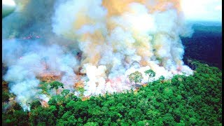 The Amazon Rainforest Is On Fire And It Can Be Seen From Space., From YouTubeVideos