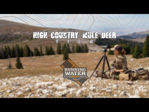 High Country Mule Deer - 2019