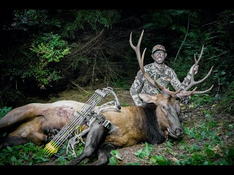 SHOOTING A ROOSEVELT ELK IN A SWAMP | LAND OF THE FREE