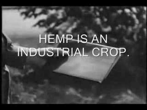 Ron Paul & Hemp for American Farmers