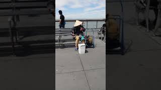 Vietanames Folk Music | Pier 39 | San Francisco