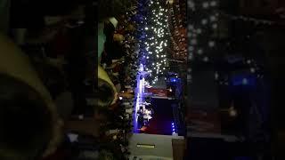 Melek Mosso - Hiç Işık Yok ve Hikayesi (Mersin Soli Konseri)