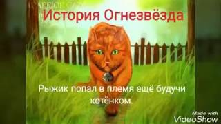 Коты-Воители~история Огнезвёзда~||Here She Comes Again ||