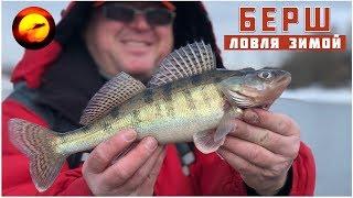 Зимняя рыбалка 2019 / Рыбалка на окуня и берша / Джиг на Москве-реке в Братеево
