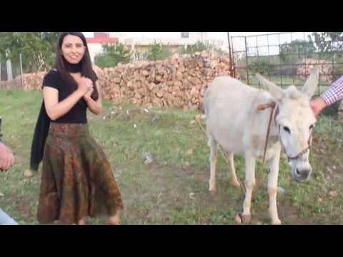 Mardin Belgeseli (Mardin Travelogue)