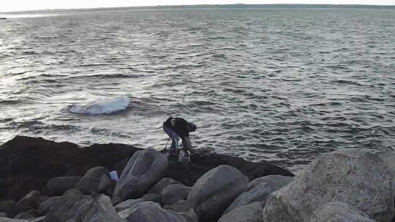 Blue Fish Sakonnet Point Rhode Island