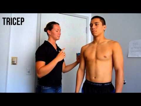 How to Perform the Skin Fold Test (Male)