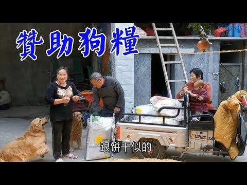 爸爸拉一車狗狗糧食,媽媽和媳婦打開先嚐嚐,看兩隻毛孩子激動的【我是趙姐】