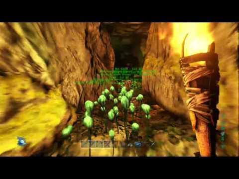 Upper South Cave Attempt 1 (Part 2)