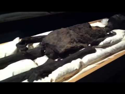 Reconstruction The King's Tut Skull | How To Save Money ...