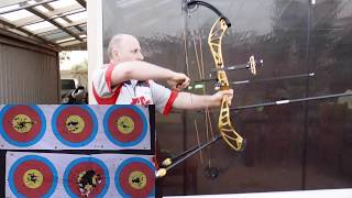 PSE Perform X target bow - 4 month review