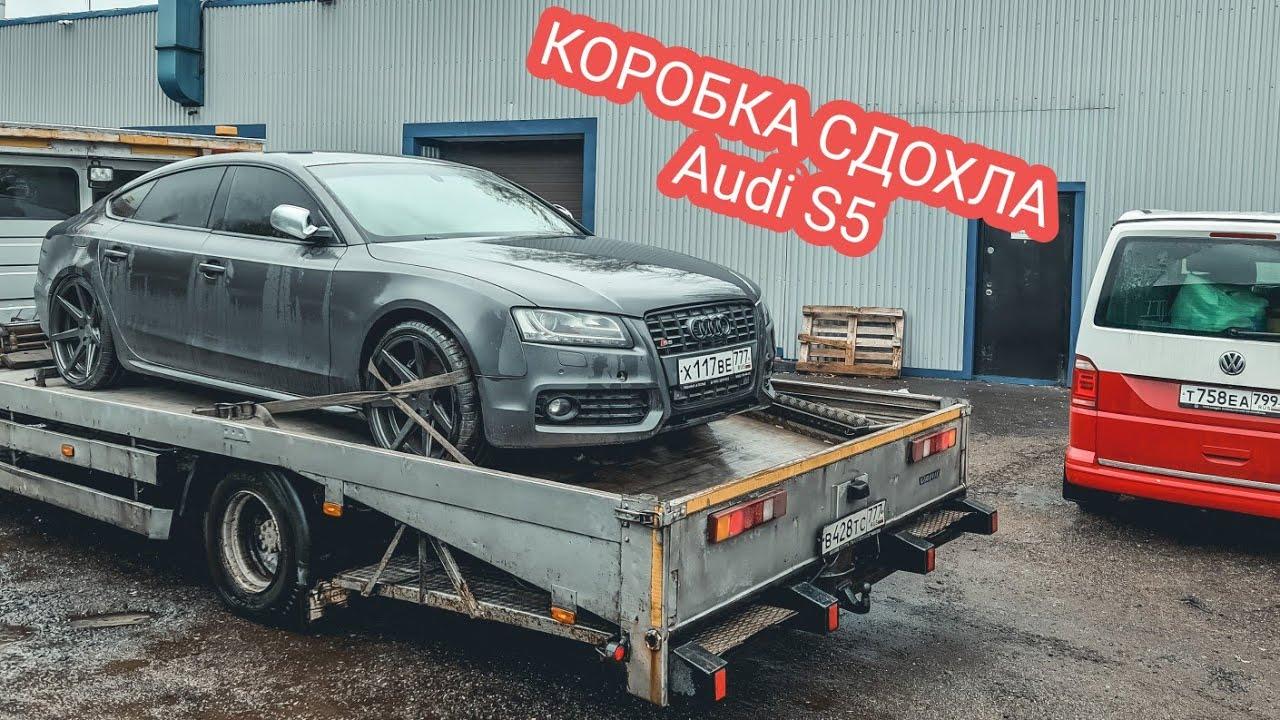 Audi S5. Вот почему не стоило ее покупать!
