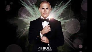 Pitbull Stereotypes Jungle Lyric Video ft E 40 Abraham