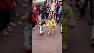 Собака которая ходит на двух ногах
