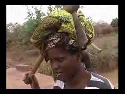African Women Fishing and Large Fruit Bats in Mali